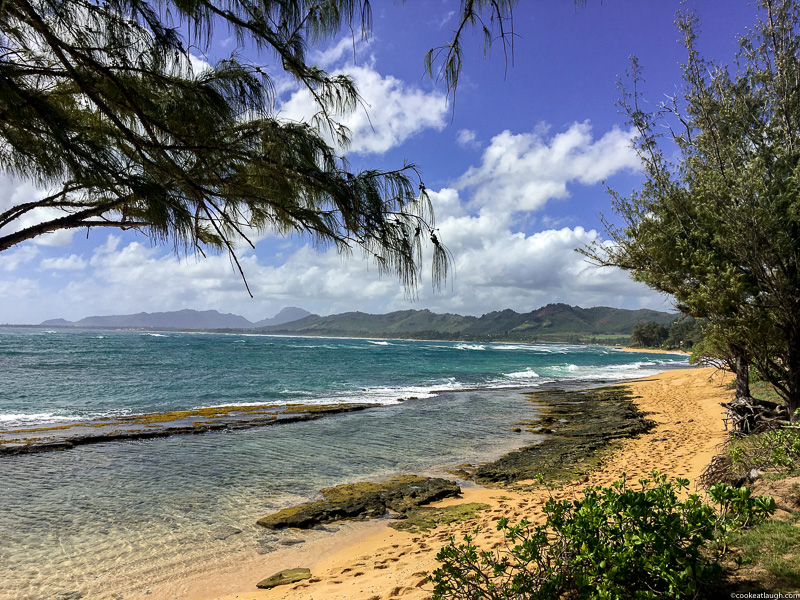 The beautiful island of Kauai- Food guide-22