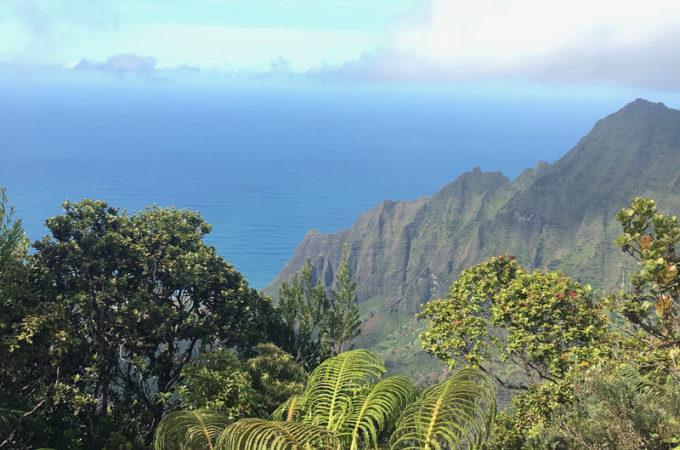 Beautiful island ofKauai:Food Guide
