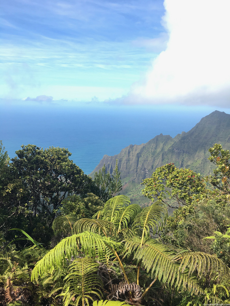 The beautiful island of Kauai- Food guide-28